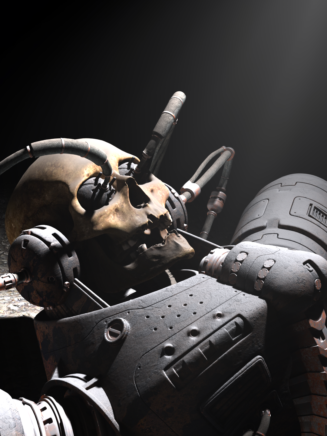 Found in a cave on a small body of the Tucana M system, the artifact is believed to be a cyborg soldier involved during the final Zone War. Though, it is worth mentionning that the only organic part of this type of unit is its original human skull.