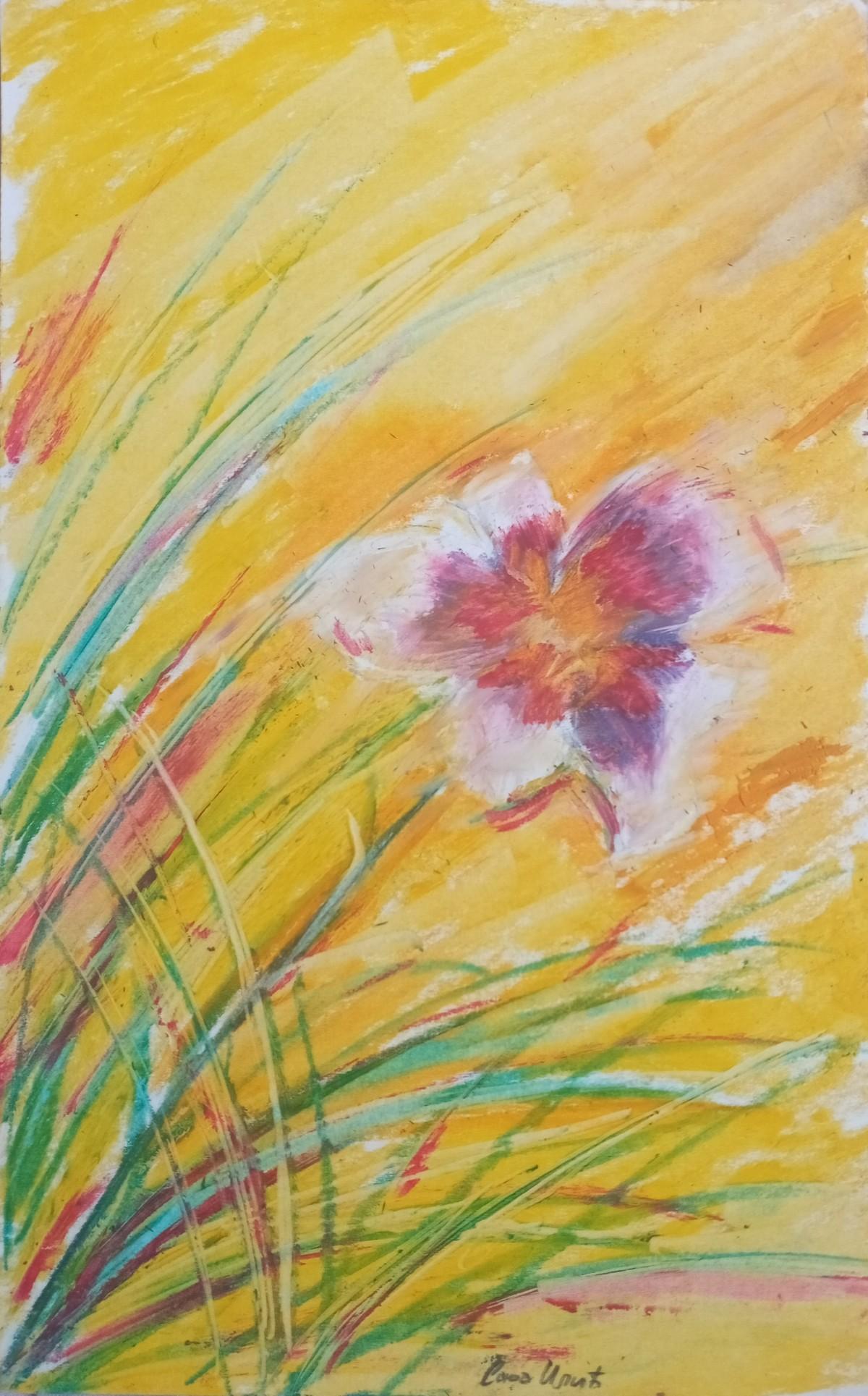 Daylilly - oil pastel  10cm×20cm 2021