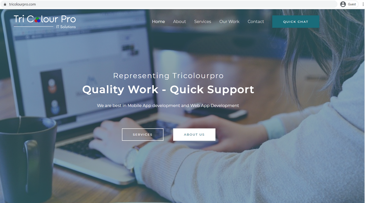 SEO Optimzed WordPress Website for TriColour Pro IT Solutions